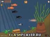 Особые рыбки