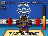 Игра Олимпиада животных – тяжёлая атлетика онлайн