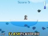 Съешь рыбу пингвин