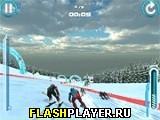 Альпийский лыжный мастер