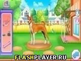 Игра Побег собаки из клетки онлайн