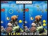 Морские подводные различия