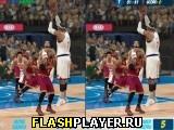 Различия в баскетбольном матче