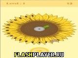 Игра Хомяк онлайн