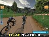 Профессиональный велогонщик