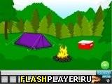 Игра Побег из прибрежного леса онлайн
