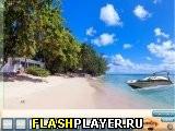 Побег с роскошного пляжа
