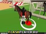 Шоу конных прыжков 3Д