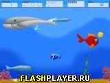 Приключения маленькой рыбки