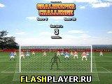 Игра Соревнование вратарей онлайн