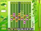 Игра Биннгрей онлайн