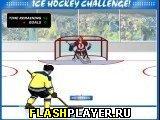 Соревнование по хоккею с шайбой