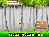 Игра Паапи и падающие кокосы онлайн