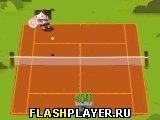 Теннис бокс-братьев
