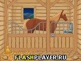 Побег из конюшни
