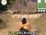 Меткий стрелок - стрельба из пистолета