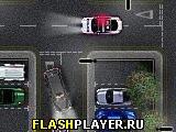 Мартышкино такси