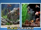 Игра Головоломка: Рыба онлайн