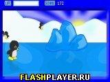 Игра Пингвиний скейтинг онлайн