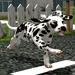 играть в симуляторы собаки онлайн