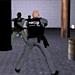 играть в стрелялки полиция онлайн